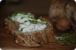 Brot mit Hüttenkäse und Kresse