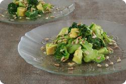 Sommergrüner Salat