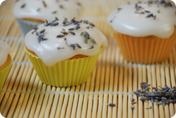 Lavendel-Buttermilch-Cupcakes